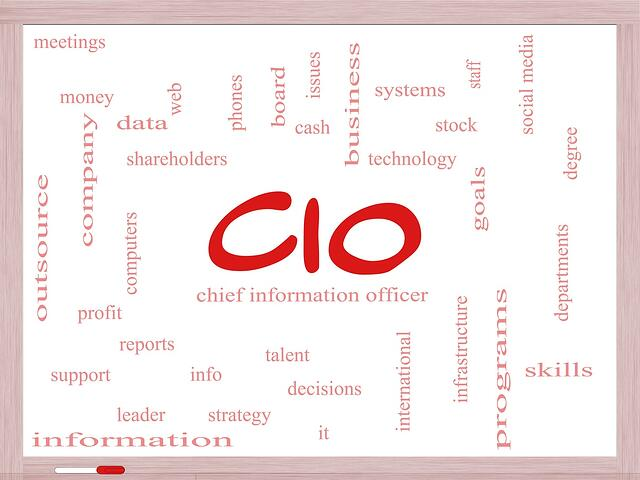 What is a CIO?